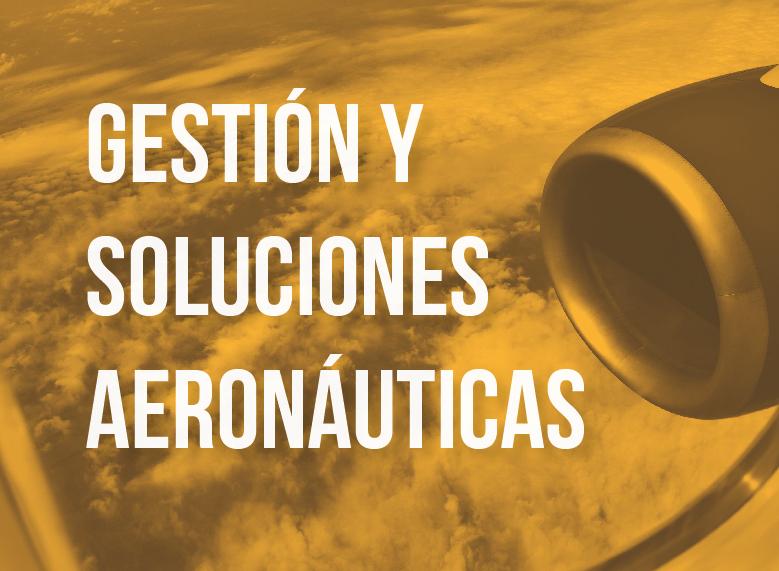 Gestión Aeronáutica - Sistemas de gestion